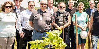 Sandvik honors its milestone with American Chestnut